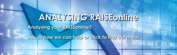 how to read a raiseonline report
