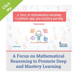Focus on mathematical reasoning