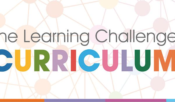 curriculum in primary schools