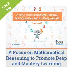 A Focus on Mathematical Reasoning