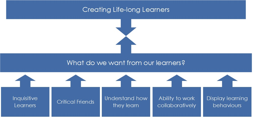 metacognitive learners